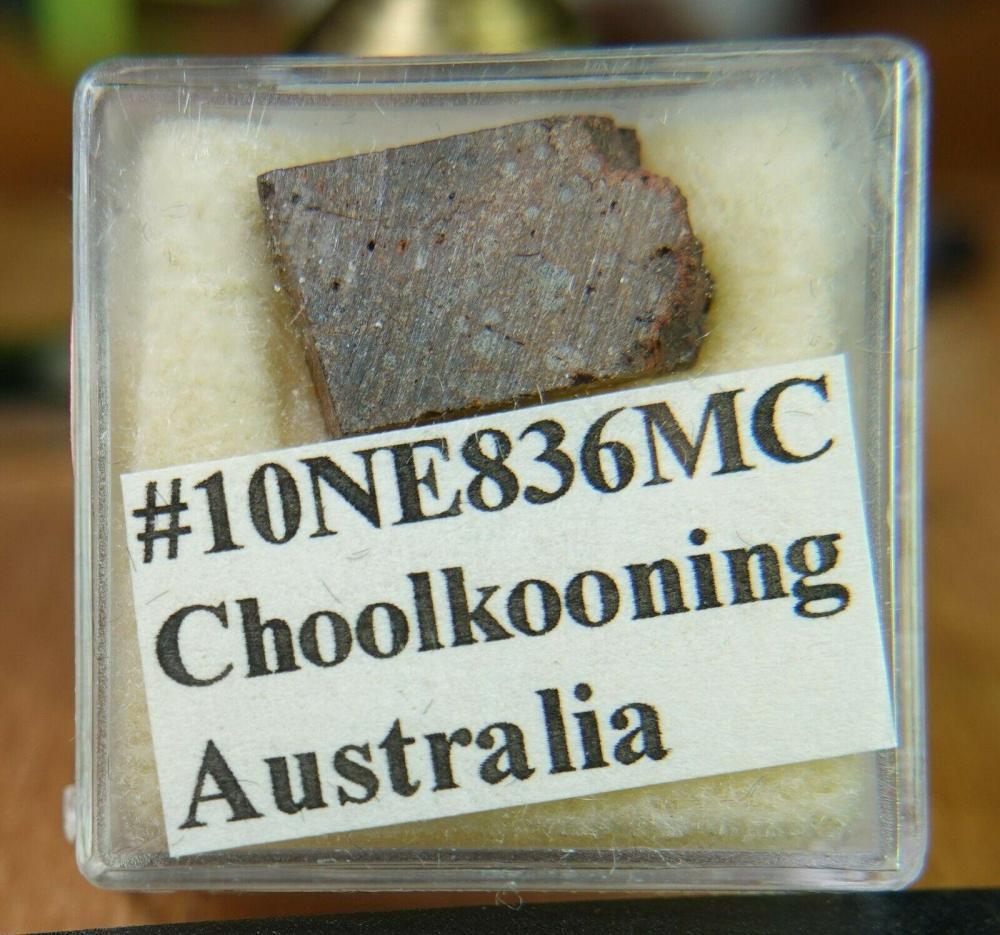 Choolkooning 001