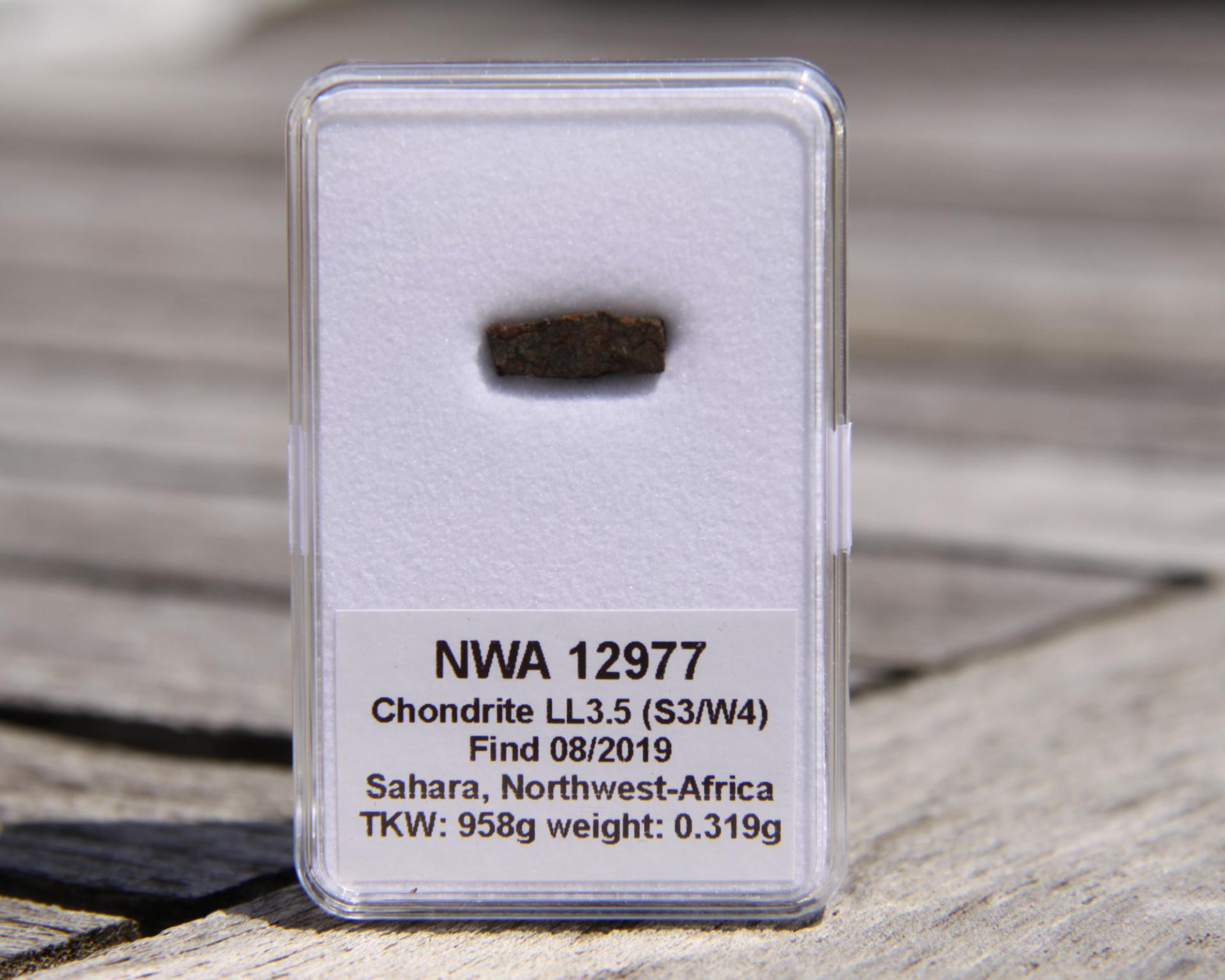 Nwa 12977