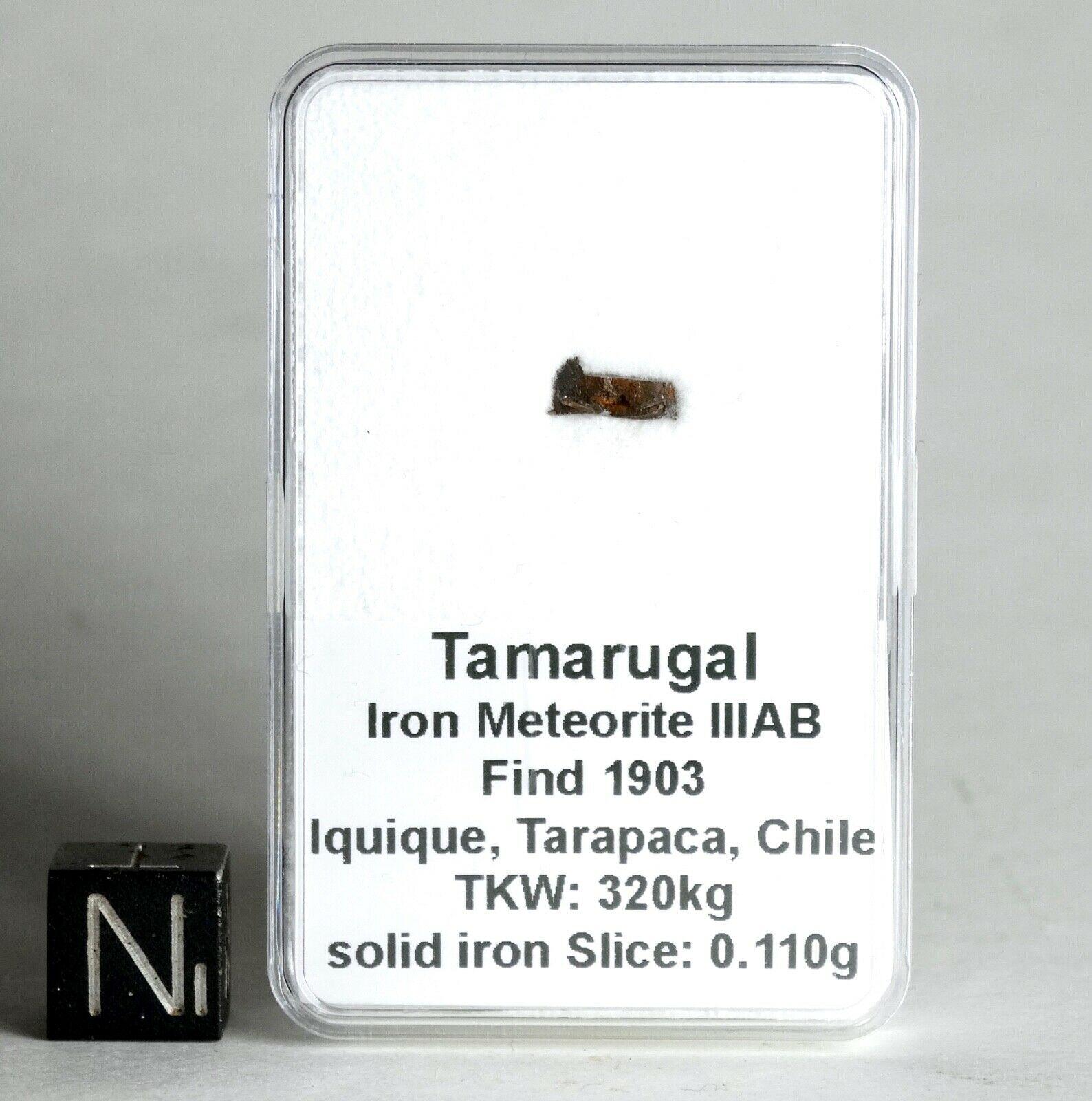 Tamarugal